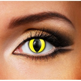 Yellow Cat Eye (Funky Innovision)